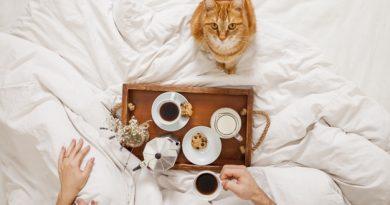 Alimentos que puedes compartir con tu mascota